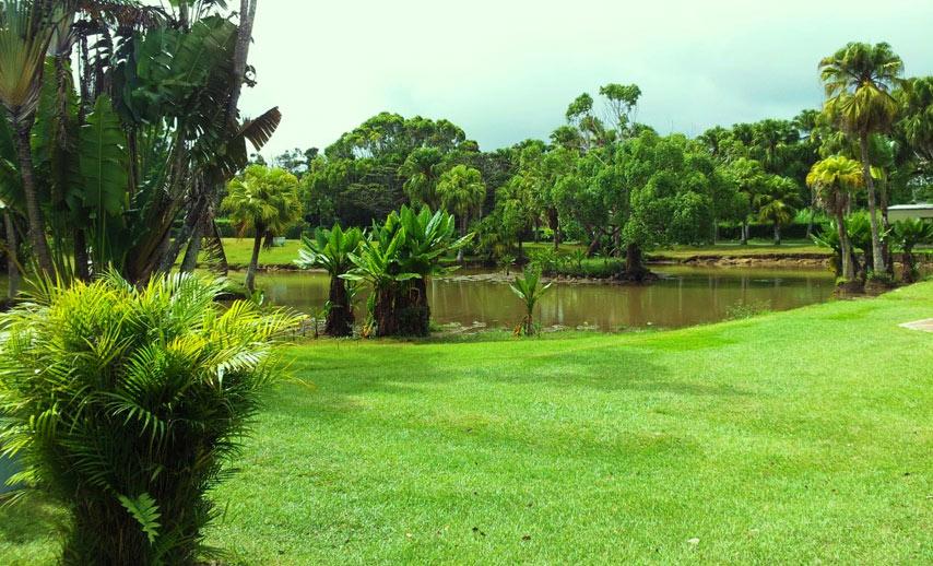 gardens-in-mauritius (3)