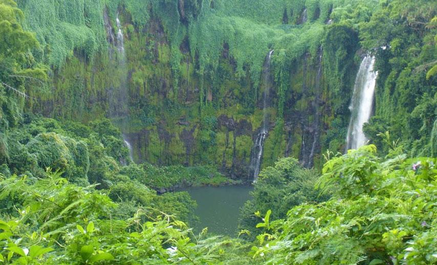 gardens-in-mauritius (8)