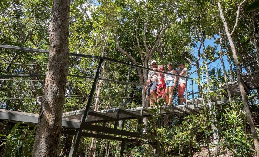 Ebony Forest of Chamarel