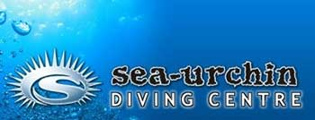 sea-urchin-diving
